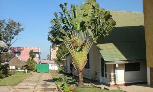 Lubumbashi (noviciate)